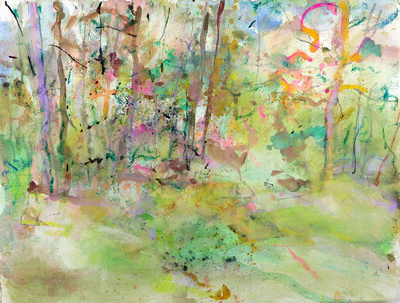 "original watercolor lake placid Adirondack park NY media 34""x28"" $900."