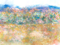 original  large watercolor autumn ,adironack ,lake placid fall  40'/60' watercolorstory about long panoramaspainted on location in the Adirondack mountains the 24' one over a 8 year period on lodge rd