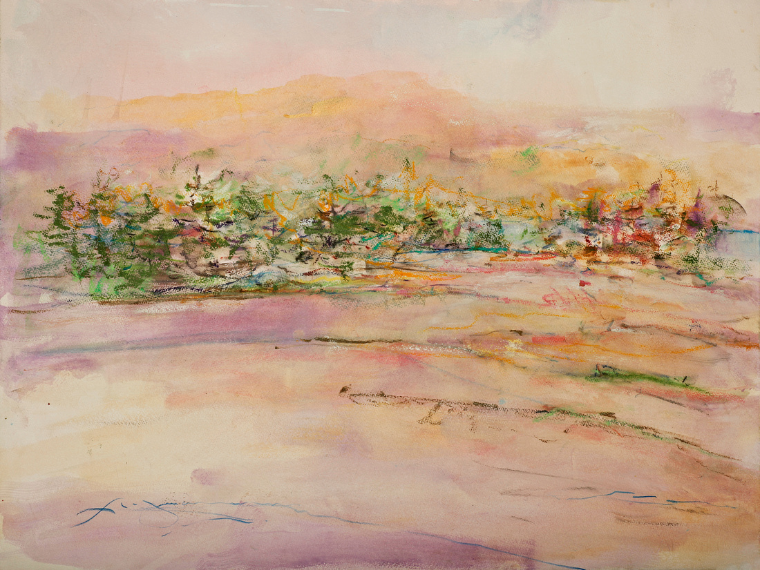 """Cadillac mountain view Maine Acadia park,22""""30"""" watercolor on location"""