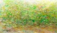 "Adirondack Forest Spring original pastel watercolor 40""60"" 3,000story about long panoramaspainted on location in the Adirondack mountains the 24' one over a 8 year period on lodge rd during a number o"