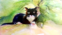 "original watercolor painting  cat bunko available in print  22""30'"