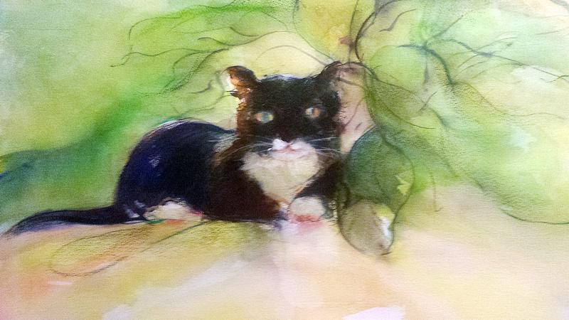 "original watercolor painting  cat bunko available in print  22""30'"